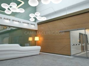 hair-transplant-turkey-istanbul-camilia-clinic-center-60